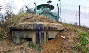 麥景陶碉堡(MacIntosh Forts)